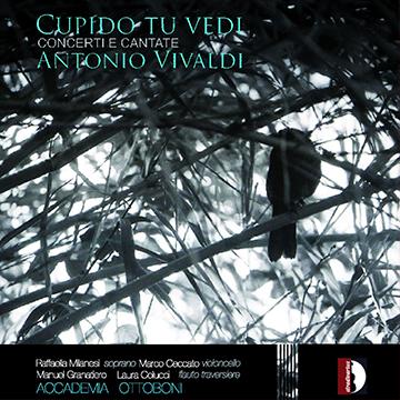 cupido_cd